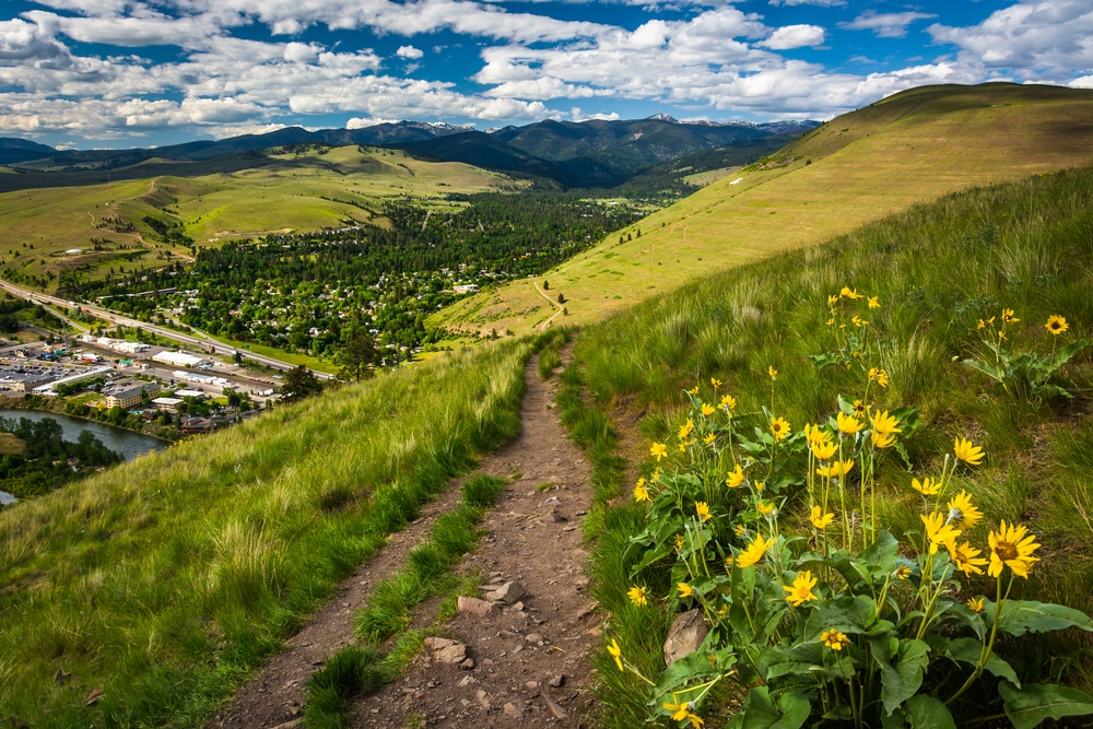 Enjoy this beautiful Missoula hike with wildflowers and great views over the valley